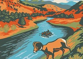 bighorn-illustration-comparison-scaled
