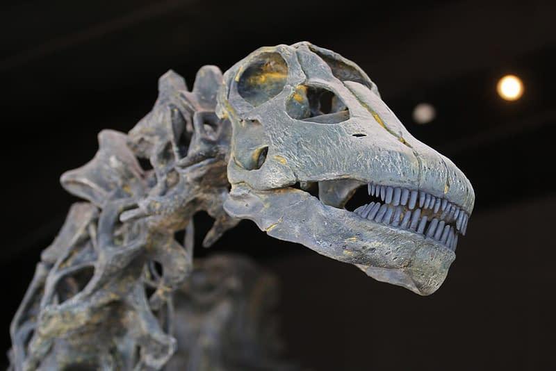 Dinosaur Experience Museum
