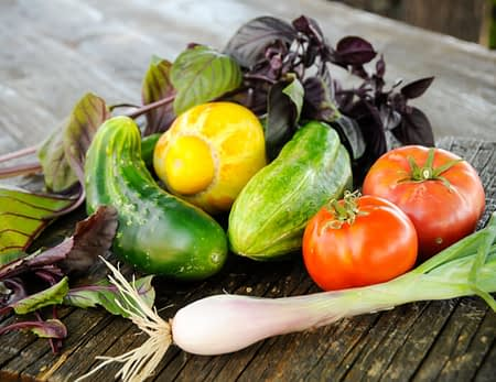 fresh ingredients and delicious menu options