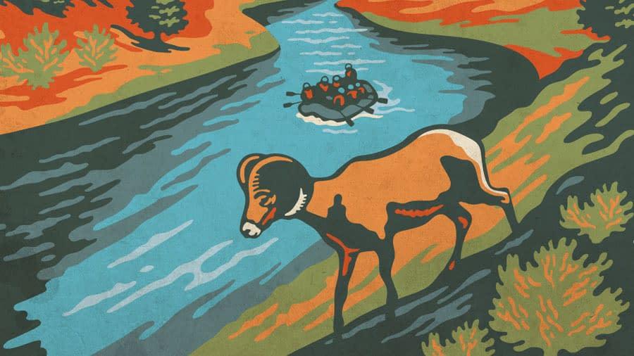 illustration of bighorn sheep and arkansas river